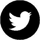 Twitter Electindo